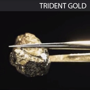 Trident Gold